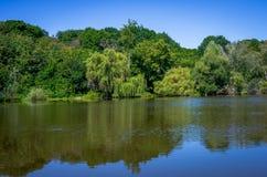 Lagoa em um dia ensolarado Fotos de Stock Royalty Free