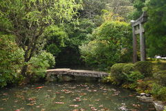 Lagoa em um jardim japonês Fotografia de Stock