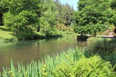 Lagoa em um parque Imagens de Stock Royalty Free