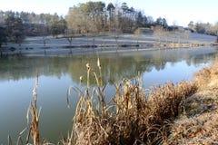 Lagoa em uma manhã do inverno fotografia de stock royalty free