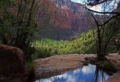 Lagoa em Zion Imagem de Stock