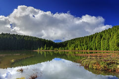Lagoa faz Canario na ilha de San Miguel Foto de Stock Royalty Free