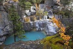 Lagoa fria Fotos de Stock Royalty Free