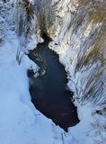 Lagoa gelada na neve Imagens de Stock Royalty Free