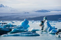 Lagoa glacial do gelo do rio em Jokulsarlon Islândia Imagem de Stock Royalty Free