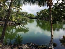 Lagoa havaiana 1 Imagens de Stock Royalty Free
