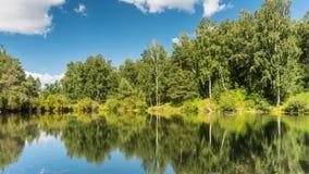 Lagoa na floresta sob nuvens video estoque