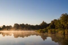 Lagoa na manhã Fotografia de Stock