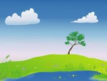 Lagoa na primavera Foto de Stock Royalty Free