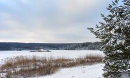 Lagoa nevado na neve Imagem de Stock Royalty Free