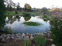 A lagoa no jardim Fotos de Stock