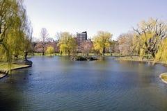 Lagoa no jardim da terra comum de Boston Fotografia de Stock Royalty Free