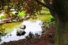 Lagoa no jardim do zen Foto de Stock