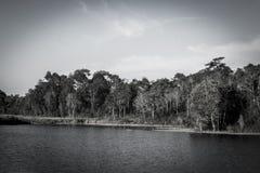 lagoa no khao yai 9 00 Imagens de Stock Royalty Free