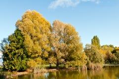 Lagoa no outono Fotografia de Stock Royalty Free