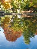 Lagoa no outono Foto de Stock