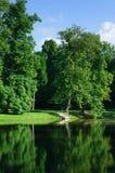 Lagoa no parque Fotos de Stock Royalty Free