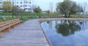 Lagoa no parque da cidade vídeos de arquivo