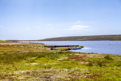 Lagoa norte Malvinas do leste island-3 Fotografia de Stock Royalty Free
