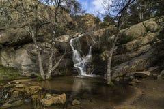 A lagoa pequena da cachoeira Rochas, ?rvores e ?gua fotos de stock
