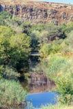 Lagoa pequena entre árvores e rochas Foto de Stock