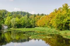 Lagoa pitoresca no parque Tivoli da cidade Imagem de Stock Royalty Free