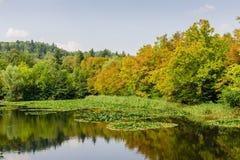 Lagoa pitoresca no parque Tivoli da cidade Fotografia de Stock