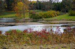 Lagoa quieta fotos de stock