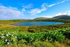 Lagoa Rasa Plate Lake - îles des Açores Photographie stock libre de droits