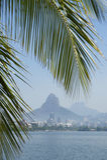 Lagoa Rio de Janeiro Brazil Scenic Skyline Palm Tree. Tropical skyline view of Lagoa lagoon in Rio de Janeiro Brazil with Ipanema and Leblon on the horizon Stock Images