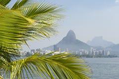 Lagoa Rio de Janeiro Brazil Scenic Skyline Palm Tree. Tropical skyline view of Lagoa lagoon in Rio de Janeiro Brazil with Ipanema and Leblon on the horizon Stock Image