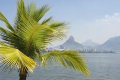 Lagoa Rio de Janeiro Brazil Scenic Skyline Palm Tree. Tropical skyline view of Lagoa lagoon in Rio de Janeiro Brazil with Ipanema and Leblon on the horizon Stock Photo