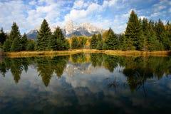 Lagoa Schwabacher do castor que aterra 3 Imagem de Stock Royalty Free