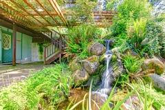 Lagoa selvagem bonita do estilo com cachoeira. Quintal da casa da exploração agrícola Imagem de Stock Royalty Free