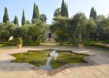 Lagoa Star-shaped imagem de stock royalty free
