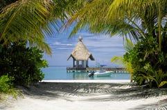 A lagoa tropical Fotografia de Stock