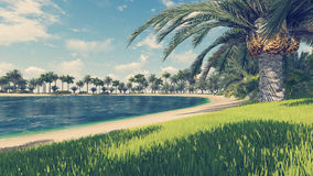 Lagoa tropical vazia da praia e da turquesa ilustração do vetor
