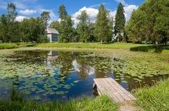 Lagoa velha Fotos de Stock