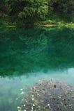 Lagoa verde Foto de Stock