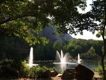 Lagoa verde Foto de Stock Royalty Free