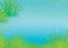 Lagoa verde do verão Fotografia de Stock Royalty Free