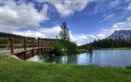 Lagoas da cascata Imagem de Stock