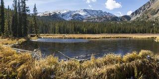 Lagoas da represa do castor de Colorado Fotografia de Stock