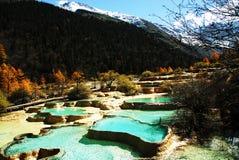 Lagoas de Miniscape em Huanglong Imagens de Stock