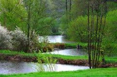 Lagoas de peixes chuvosas Imagens de Stock Royalty Free