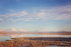 Lagoas de sal do deserto de Atacama fotografia de stock royalty free