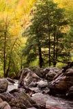 Lagodekhi park narodowy (Gruzja) obrazy stock