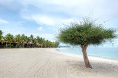 Lagoi Bay, Bintan, Indonesia. Beach and white sand at Lagoi Bay at dusk, Bintan, Indonesia Stock Photos