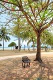 Lagoi fjärd, Bintan, Indonesien Royaltyfria Bilder