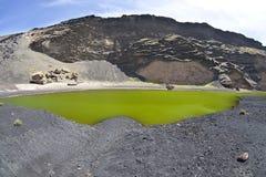 lagolanzarote verde Royaltyfri Bild